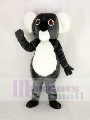 Mignonne gris Koala Mascotte Costume Dessin animé