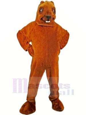 marron Castor Mascotte Adulte Costume