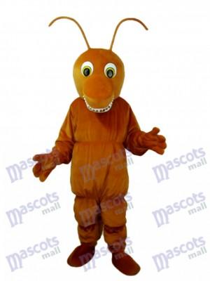 Insecte Costume de mascotte brune marron insecte