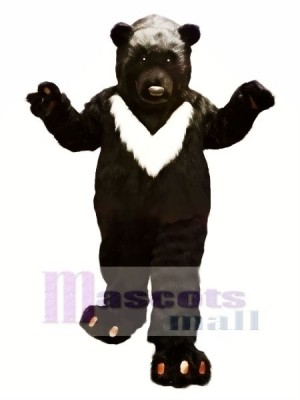 Gros Noir Ours Mascotte Les costumes Animal