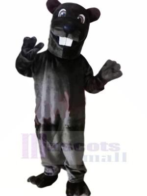 Noir Léopard Mascotte Les costumes Animal
