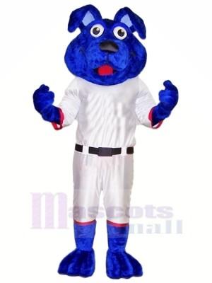 Bleu Chien avec blanc Costume Mascotte Les costumes Animal