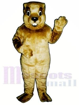 Marmotte Costumes De Mascotte