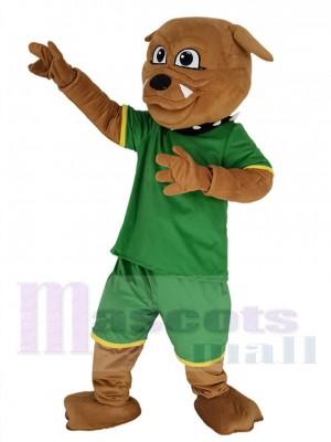 Bouledogue mascotte costume