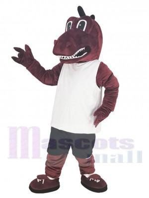 Dragon costume de mascotte