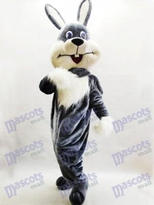 Lapin gris Lapin de Pâques Lièvre costume de mascotte des animaux
