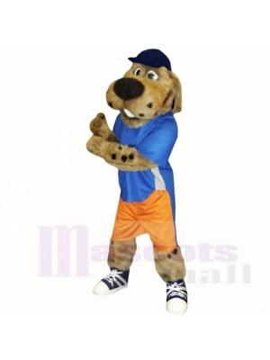 École de costumes de mascotte chien de sport avec chapeau bleu