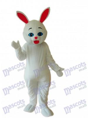 Mascotte de lapin de Pâques Costume adulte Animal