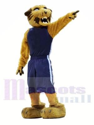 sport Chat sauvage Avec Bleu Costume Mascotte Les costumes Animal