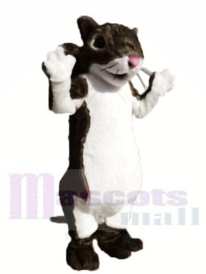 Mignon écureuil léger Costume de mascotte