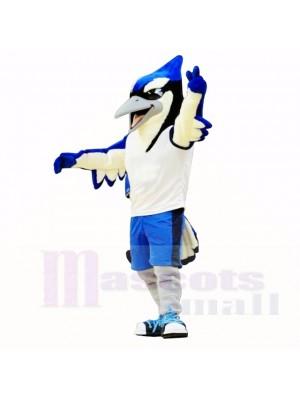 Mascotte sport oiseau bleu et noir école de costumes