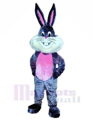 Heureux lapin lapin Mascotte Les costumes Dessin animé