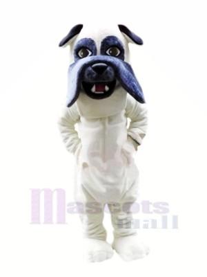 Poids léger blanc Bouledogue Mascotte Les costumes