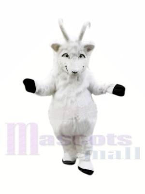 Peluche Chèvre Blanche Costumes De Mascotte