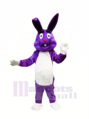 Violet Pâques lapin Mascotte Les costumes Dessin animé
