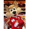 Arizona Coyotes hurleur le costume de mascotte de loup Coyote