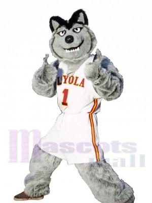 Loup gris Équipe de football sportif Costume de mascotte