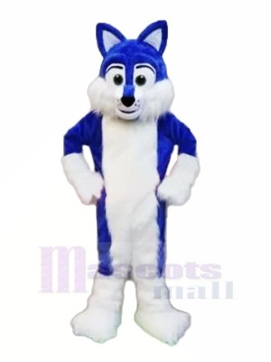 Bleu Velu Rauque Mascotte Les costumes Animal