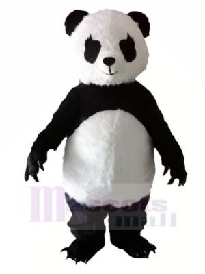 Panda avec Longue Les cils Mascotte Les costumes Animal