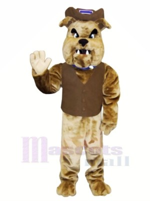 marron Bouledogue avec Gilet Mascotte Les costumes Animal