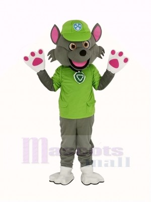 Paw Patrol Personnage Rocheux Mascotte Costume