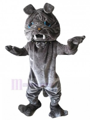 Costume de mascotte de chien Sharpei fourrure grise avec animal aux yeux bleus