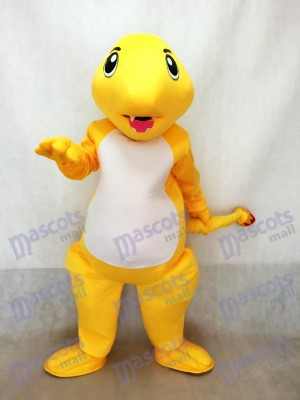 Pokémon Pokémon Pokémon GO Pocket Monster Costume de mascotte de feu de dragon Charmander