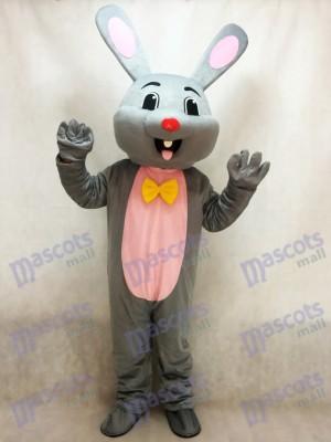 Costume de mascotte de lapin gris lapin gris de Pâques