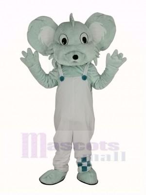 Gris Koala dans blanc Manteau Mascotte Costume