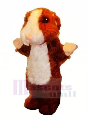 Peu Hamster Mascotte Costume Dessin animé