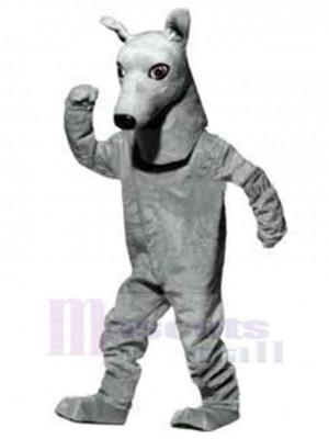 Chien lévrier intelligent Costume de mascotte Animal