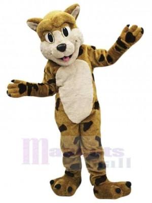 Lynx Bobcat costume de mascotte
