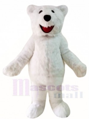 Poilu Polaire Ours Mascotte Les costumes Animal