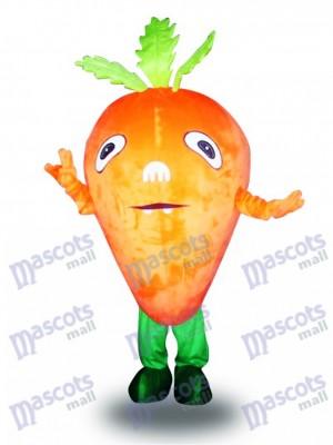 Carotte de légumes de carotte orange Légume de légume alimentaire