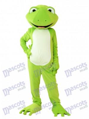 Costume de mascotte de grenouille verte Animal
