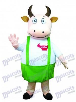 Grosse vache avec un costume de mascotte bleu