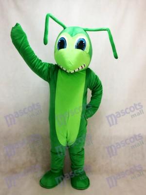 Insecte Costume Mascotte Grasshopper