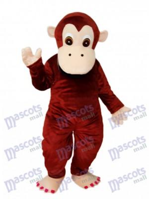 Mascotte de gorille Costume adulte Animal