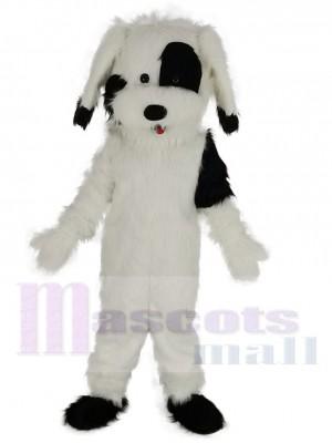 Drôle Chien noir et blanc Costume de mascotte Animal
