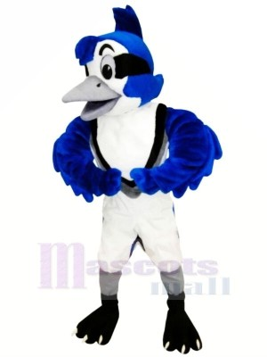 Mignonne Bleu Geai Mascotte Les costumes Animal