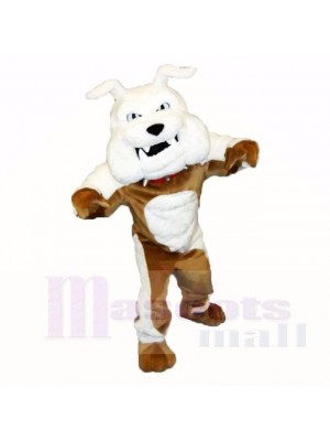 Greenstone Bouledogue Mascotte Les costumes Adulte