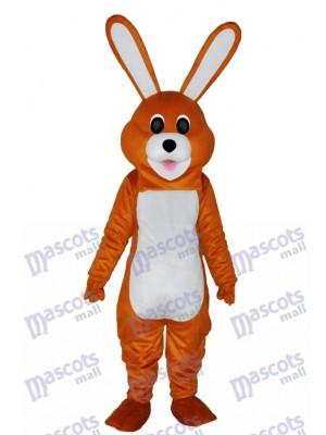Pâques Beau Lapin Brun Costume Mascotte Adulte Animal