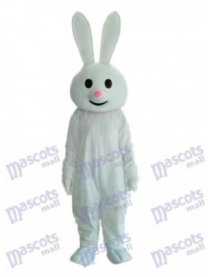 Costume adulte de mascotte de lapin rose de Pâques de Pâques Animal