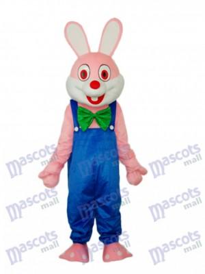 Costume adulte Mascotte de lapin de Pâques Robbie Animal