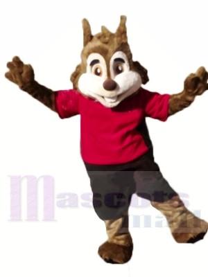 Écureuil sportif mignon Costumes De Mascotte