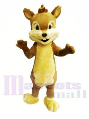 Chipmunk Furry mignon Costumes De Mascotte