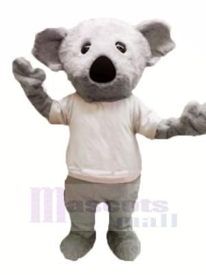 Velu Gris Koala Mascotte Les costumes Dessin animé