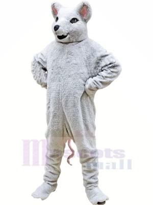 blanc Rongeur Mascotte Les costumes Dessin animé
