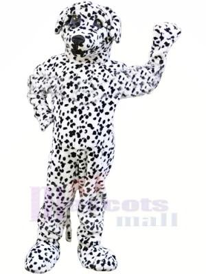 Fort dalmatien Chien Mascotte Les costumes Animal
