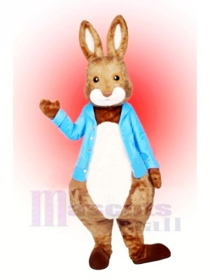 Peter lapin Mascotte Costume Dessin animé